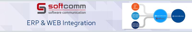 ERP & Web Integration